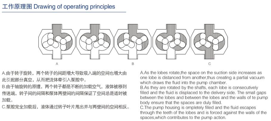 Rotor Pump 2 Lobe Pump / Rotor Pump